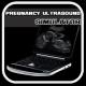 Pregnancy Ultrasound Simulator