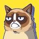 Grumpy Cat's Worst Game Ever